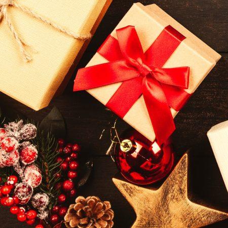 vegane weihnachten-quadratisch