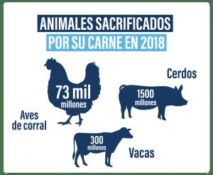animales sacrificados por carne