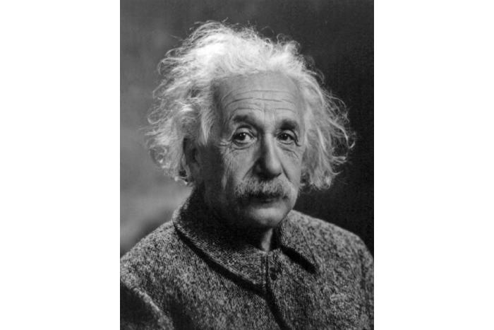 Bekende veganisten over heel de wereld - Einstein