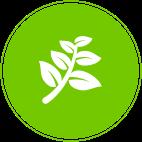 Pro Milieu