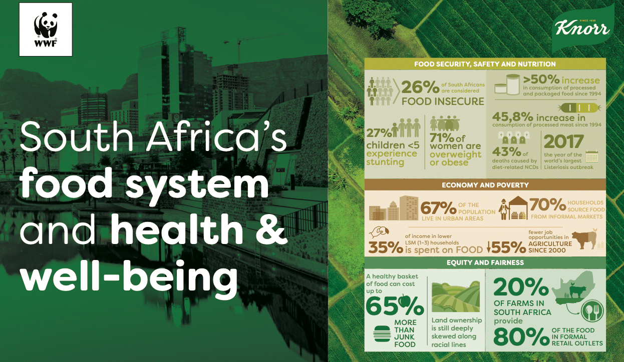 Knorr SA food system