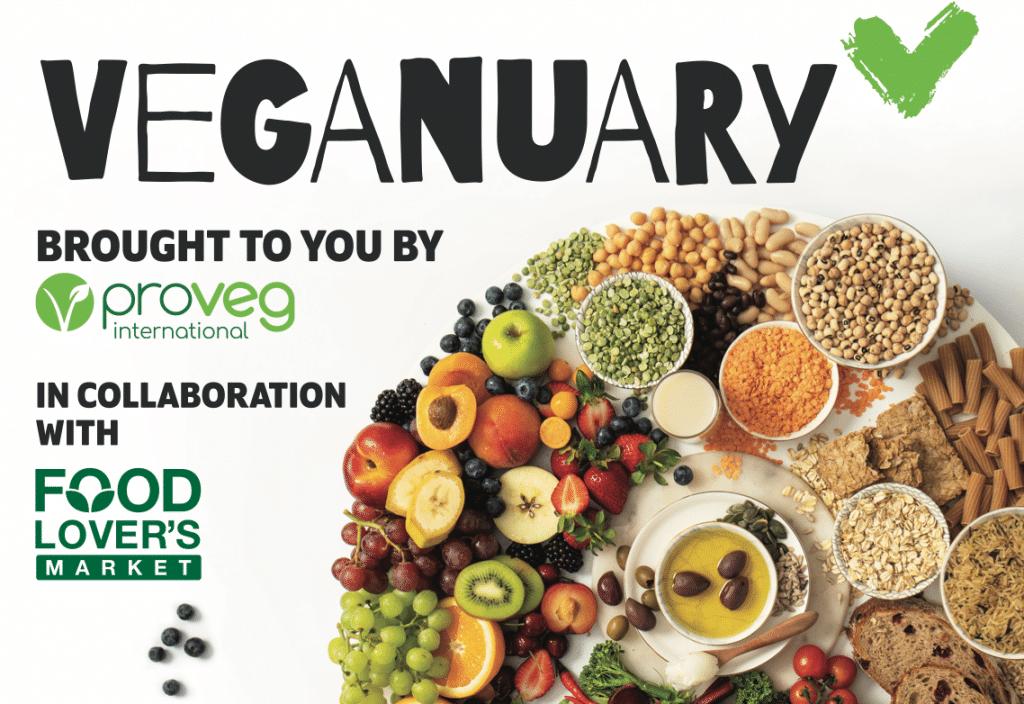Affordable Vegan meal plan
